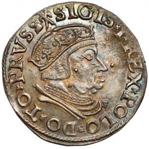 Zygmunt I Stary, Trojak Gdańsk 1537 - b.ładny
