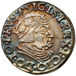 Zygmunt I Stary, Trojak Gdańsk 1539 - bardzo ładny