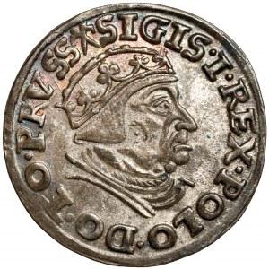 Zygmunt I Stary, Trojak Gdańsk 1539 - bez krzyża - PIĘKNY