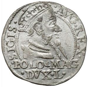 Zygmunt II August, Grosz na stopę polską 1568, Tykocin - b.ładny