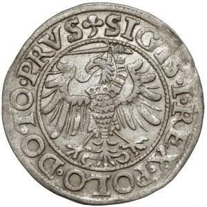 Zygmunt I Stary, Grosz Elbląg 1538 - RZADKI