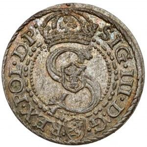 Zygmunt III Waza, Szeląg Malbork 1592 - piękny
