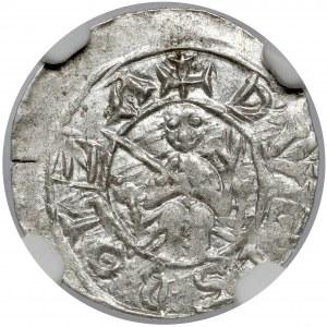 Bolesław III Krzywousty, Denar - Książę na tronie - DENARIVS