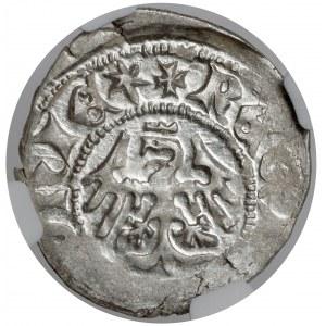 Władysław II Jagiełło, Półgrosz Kraków - typ 4 - litery AS - PIĘKNY