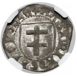 Kazimierz IV Jagiellończyk, Szeląg Toruń - falsyfikat z epoki - RZADKI