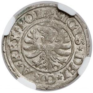 Zygmunt I Stary, Szeląg Gdańsk 1530 - piękny
