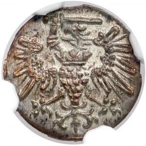 Bezkrólewie, Denar Gdańsk 1573 - 12 łuków - piękny