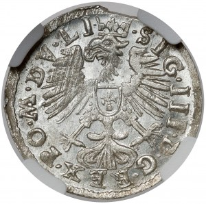 Zygmunt III Waza, Grosz Wilno 1609 - piękny