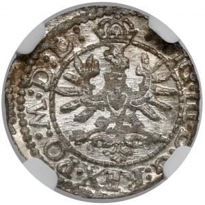 Zygmunt III Waza, Szeląg Wilno 1623 - menniczy