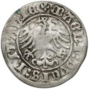 Zygmunt I Stary, Półgrosz Wilno 1510 - błąd LITANIE - RZADKI