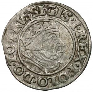 Zygmunt I Stary, Grosz Gdańsk 1538 - PRVS•