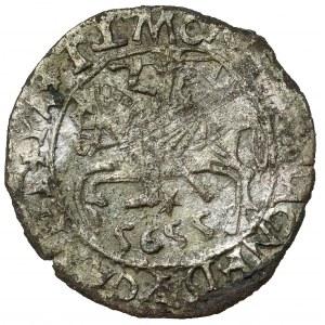 Zygmunt II August, Półgrosz Wilno 5655 - falsyfikat z epoki