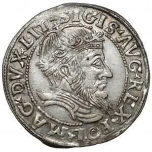 Zygmunt II August, Grosz na stopę litewską 1555 - bardzo ładny