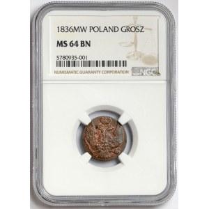 1 grosz 1836 MW - PIĘKNY
