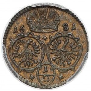 Śląsk, Leopold I, 1/2 krajcara 1681, Opole (jednostronne) - rzadkie