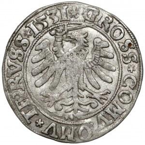 Zygmunt I Stary, Grosz Toruń 1531 - duża głowa
