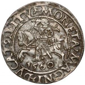 Zygmunt II August, Półgrosz Wilno 1560 - LITV - ex. Kałkowski
