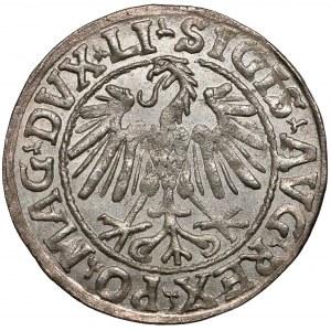 Zygmunt II August, Półgrosz Wilno 1546 - ex. Kałkowski
