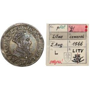 Zygmunt II August, Czworak Wilno 1565 - L/LITV - ex. Kałkowski