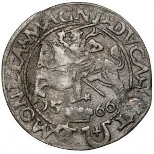 Zygmunt II August, Grosz na stopę polską 1566, Tykocin - JASTRZĘBIEC - ex. Kałkowski