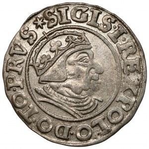 Zygmunt I Stary, Grosz Gdańsk 1539 - ex. Kałkowski