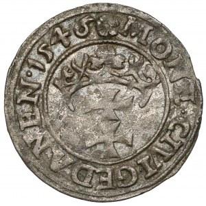 Zygmunt I Stary, Szeląg Gdańsk 1546 - ex. Kałkowski