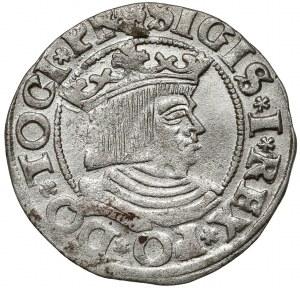 Zygmunt I Stary, Grosz Gdańsk 1533