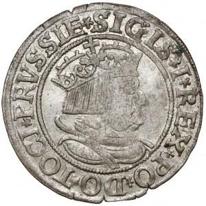 Zygmunt I Stary, Grosz Toruń 1534 - z włosami