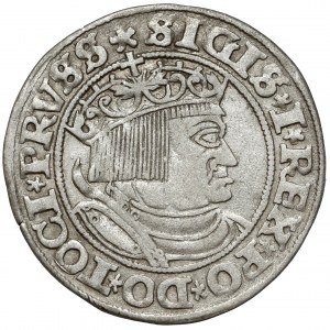 Zygmunt I Stary, Grosz Toruń 1532 - PRVSS