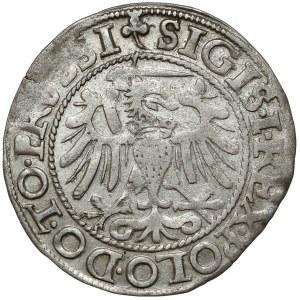 Zygmunt I Stary, Grosz Elbląg 1540