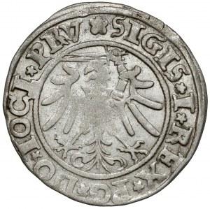 Zygmunt I Stary, Grosz Elbląg 1534 - PRV