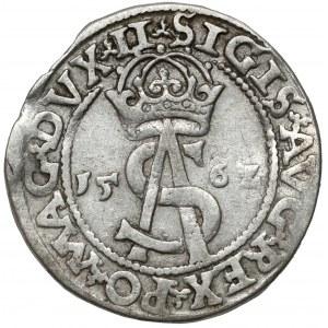 Zygmunt II August, Trojak Wilno 1562 - duża Pogoń - LI/L