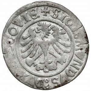 Zygmunt I Stary, Grosz Głogów 1506