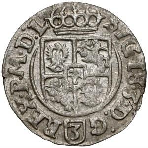 Zygmunt III Waza, Półtorak Bydgoszcz 1625 - Sas