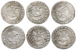 Zygmunt I Stary, Półgrosz Wilno 1519-1523 - zestaw (6szt)