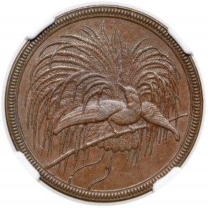 German New Guinea / Papua New Guinea, 10 pfennig 1894-A