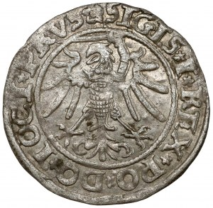 Zygmunt I Stary, Grosz Elbląg 1535