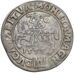 Zygmunt II August, Grosz na stopę litewską 1555, Wilno