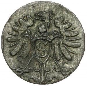 Prusy, Albrecht Fryderyk, Denar Królewiec 1571 - rzadki
