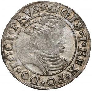 Zygmunt I Stary, Grosz Toruń 1531 - mniejsza głowa