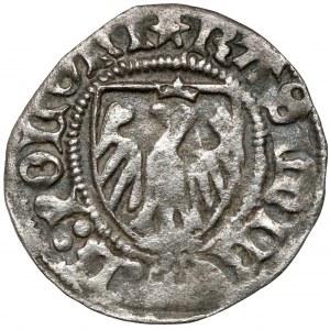 Kazimierz IV Jagiellończyk, Szeląg Elbląg - kółko nad tarczą