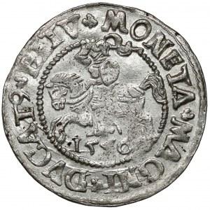 Zygmunt II August, Półgrosz Wilno 1546 - owalna tarcza - piękny
