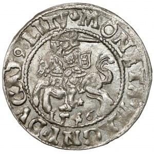 Zygmunt II August, Półgrosz Wilno 1546 - wczesny typ - piękny
