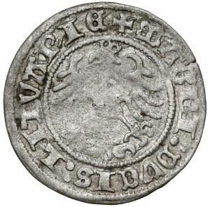 Zygmunt I Stary, Półgrosz Wilno 1518 - błąd 158 - b.rzadki