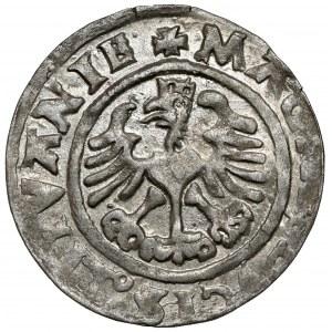Zygmunt I Stary, Półgrosz Wilno 1526 - bardzo ładny