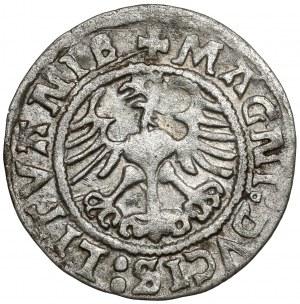 Zygmunt I Stary, Półgrosz Wilno 1523