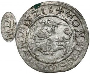 Zygmunt I Stary, Półgrosz Wilno 1521 - SIGISMVND - rzadki