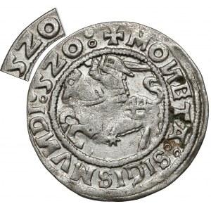 Zygmunt I Stary, Półgrosz Wilno 1520 - skrócona data 5Z0