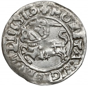 Zygmunt I Stary, Półgrosz Wilno 1519 - bardzo ładny