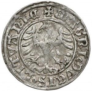 Zygmunt I Stary, Półgrosz Wilno 1509 - z pochwą